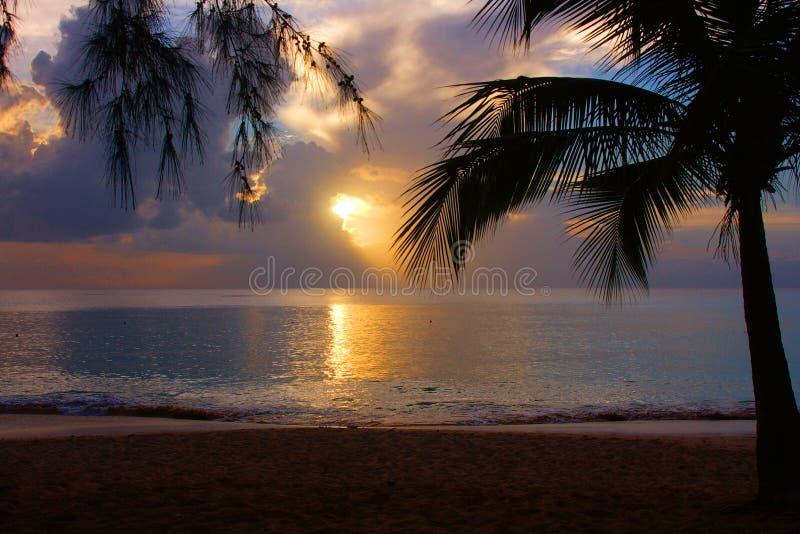 Crépuscule tropical images libres de droits