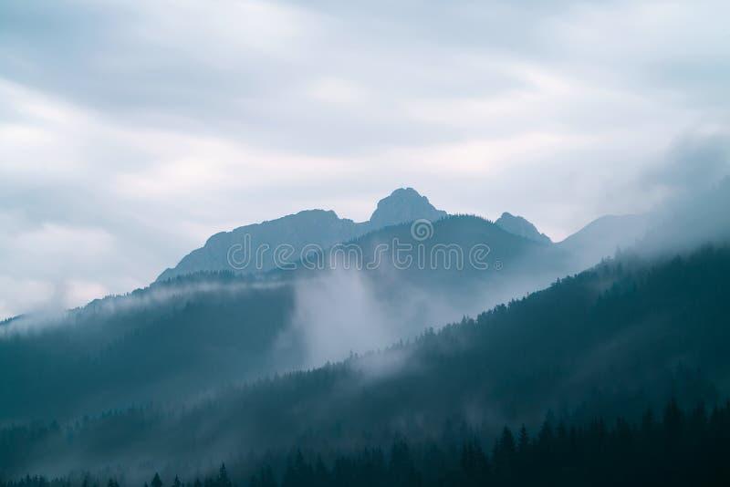 Crête de Giewont en montagnes de Tatra photos libres de droits