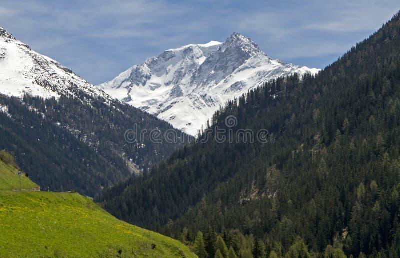 Crête de montagne détaillée encadrée par la forêt images stock