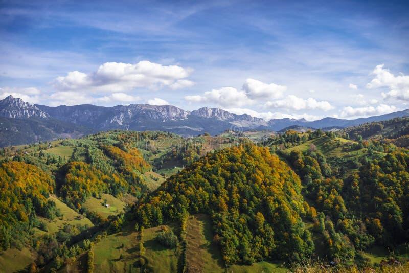 Crête de montagne et forêt - Autumn Foliage photos stock