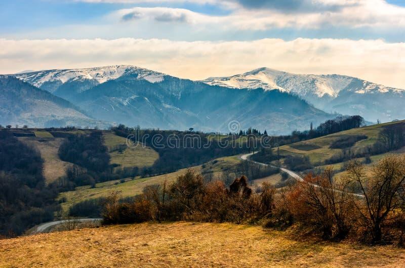 Crêtes de Milou d'arête de montagne carpathienne image stock