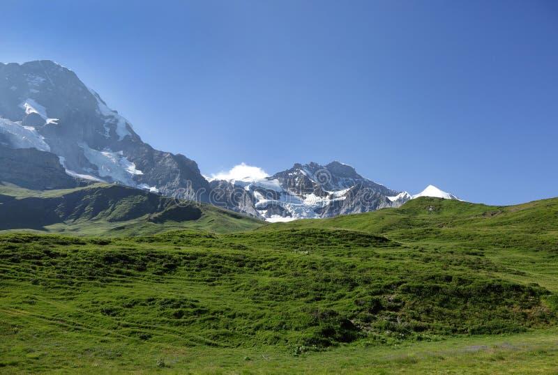 Crêtes de Monch et de Jungfrau des Alpes suisses sur le chemin à Kleine Scheidegg image stock