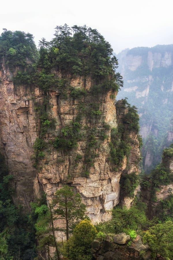 Crêtes de montagne grandes de yuanjiajie photographie stock libre de droits