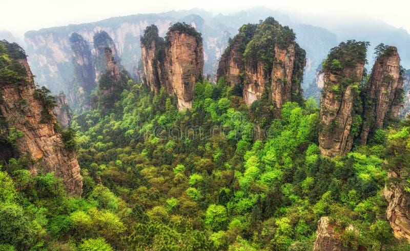 Crêtes de montagne grandes de yuanjiajie images libres de droits