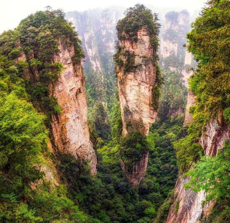 Crêtes de montagne grandes de yuanjiajie photo libre de droits