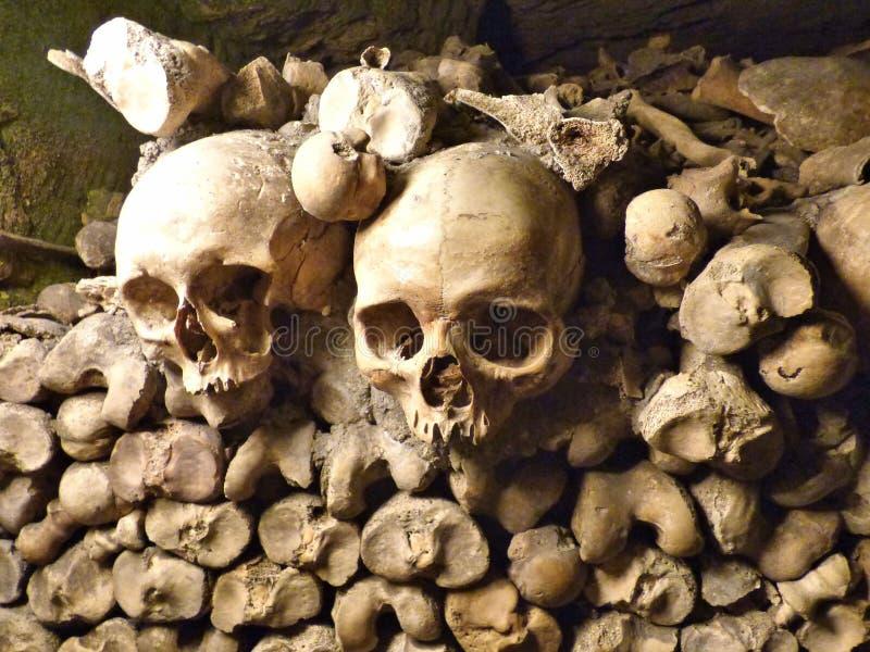 Cr?nes dans les catacombes photos stock