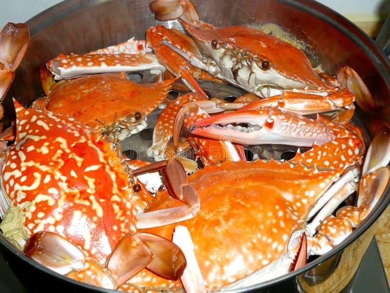 Download Crab Royalty Free Stock Photos - Image: 14772168