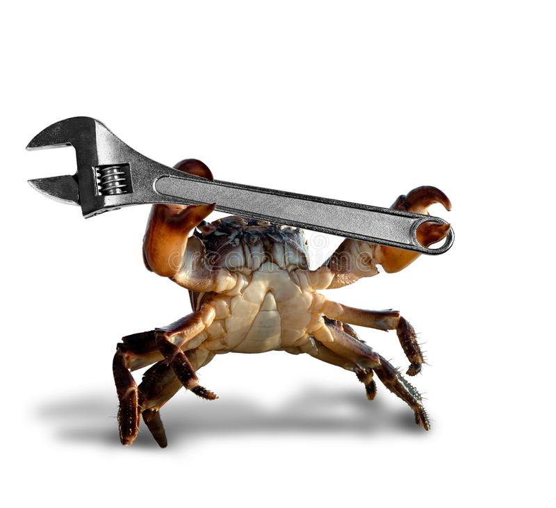 Crab with adjustable spanner stock images