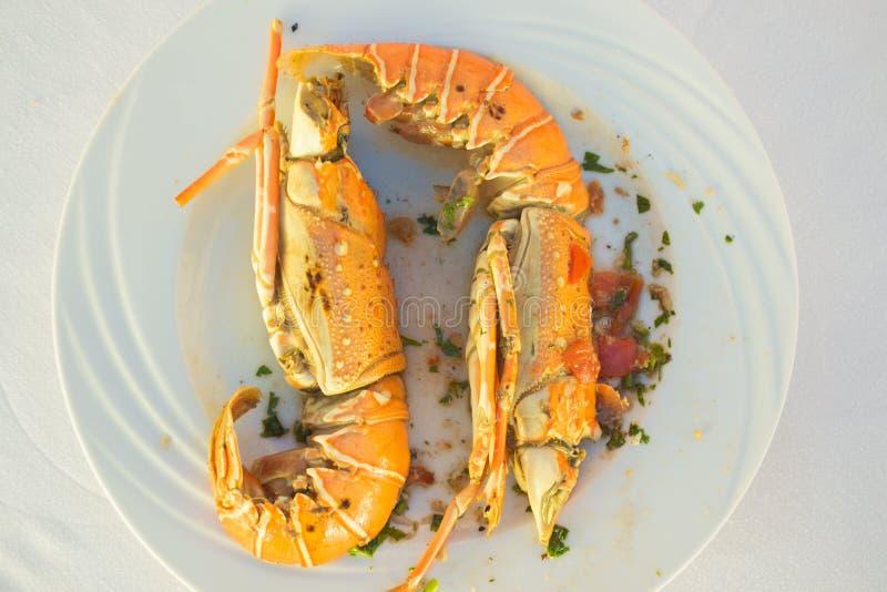 Crab foob royalty free stock photos