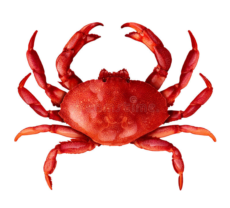 Crab Isolated stock photos