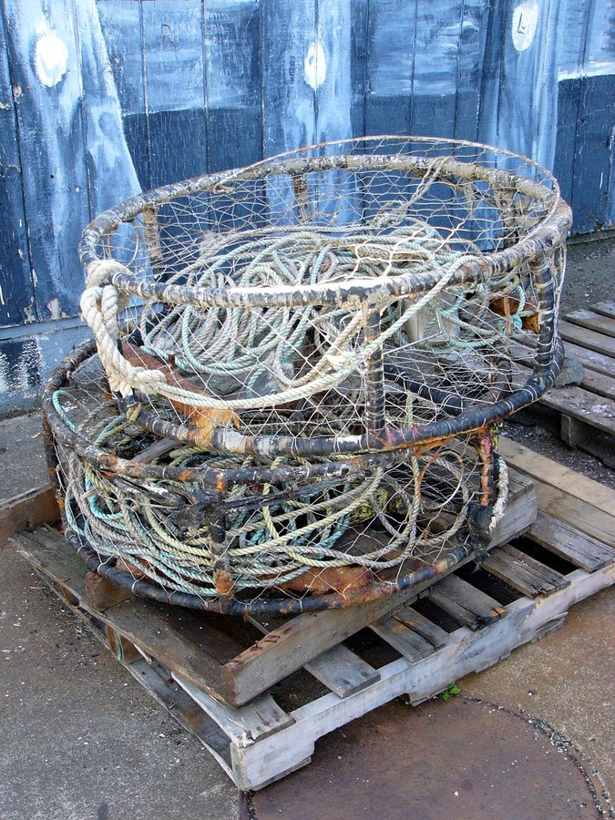 Download Crab Pots stock image. Image of fishing, harbor, coast - 196143