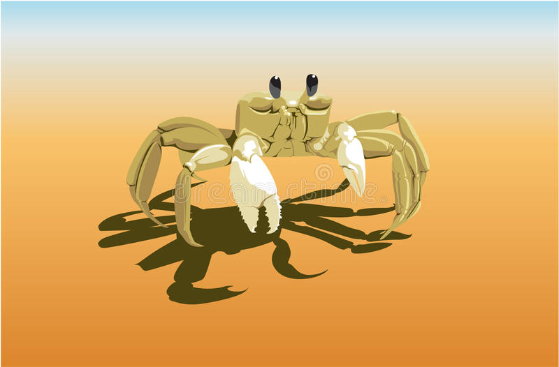 Crab On The Sand Royalty Free Stock Photos