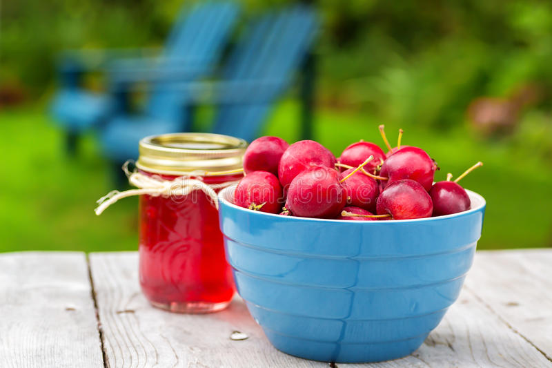 Crabapple Jelly. Fresh crabapples with jars of crabapple jelly stock photo
