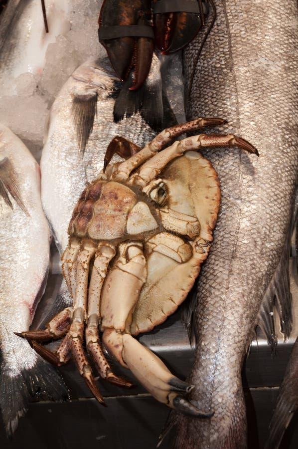 Crabe au marché de poissons à Malaga photographie stock libre de droits