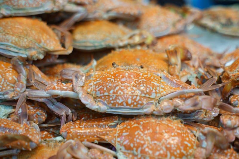 Crabe bleu cuit à la vapeur à vendre au marché thaïlandais de nourriture de rue photos stock