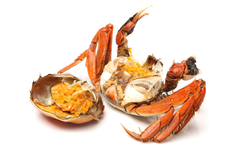 Crabe cuit image stock