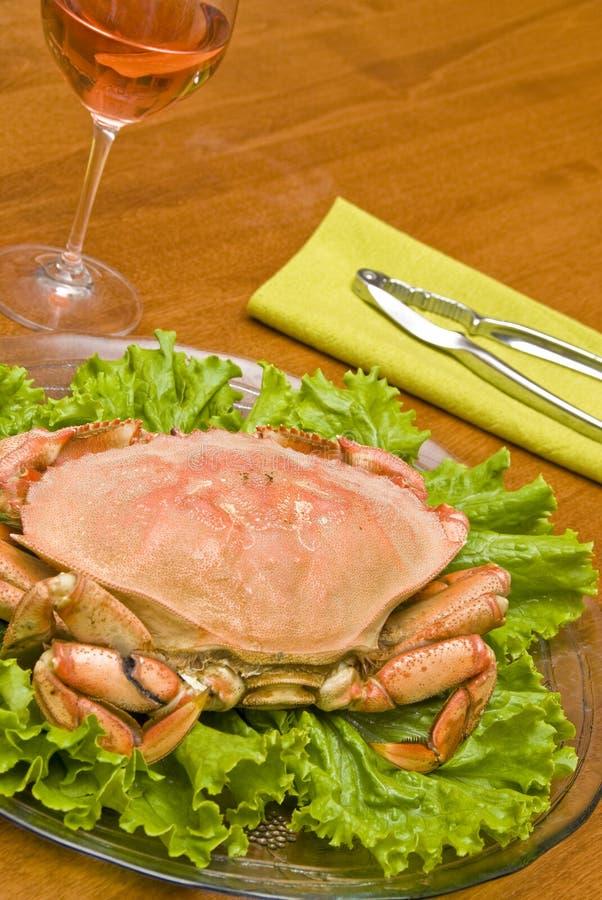 Crabe de Dungeness images libres de droits