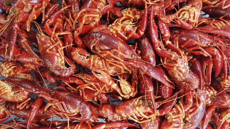 Crabe de rivière, crevette rouge bouillie photo stock