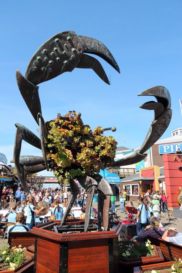 Crabe de San Francisco photos libres de droits