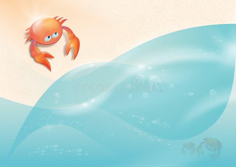 Crabe rampant à la mer photos libres de droits