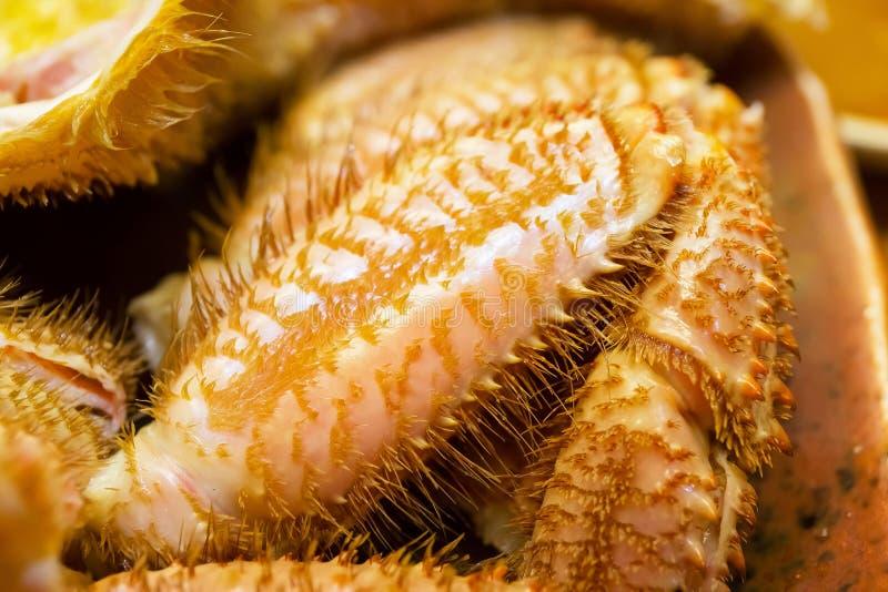 Crabe velu japonais images stock
