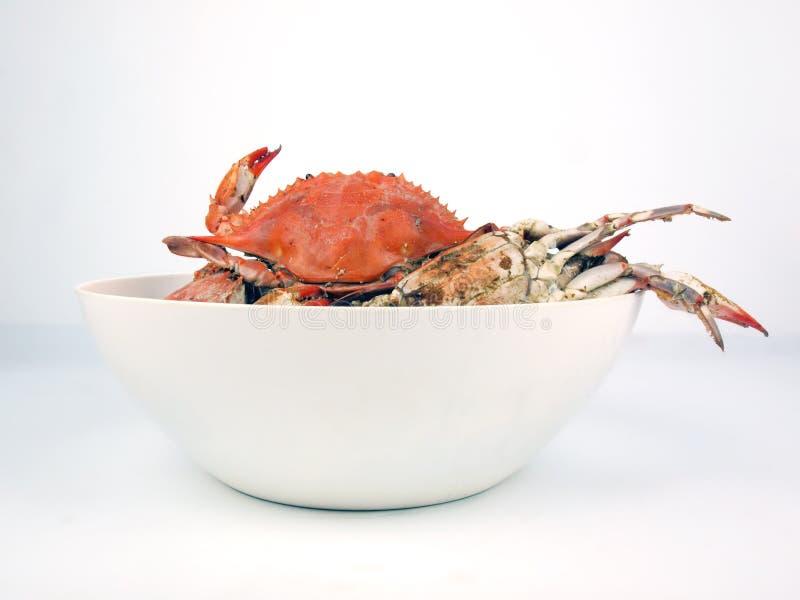 Crabes bleus cuits dans la cuvette image libre de droits