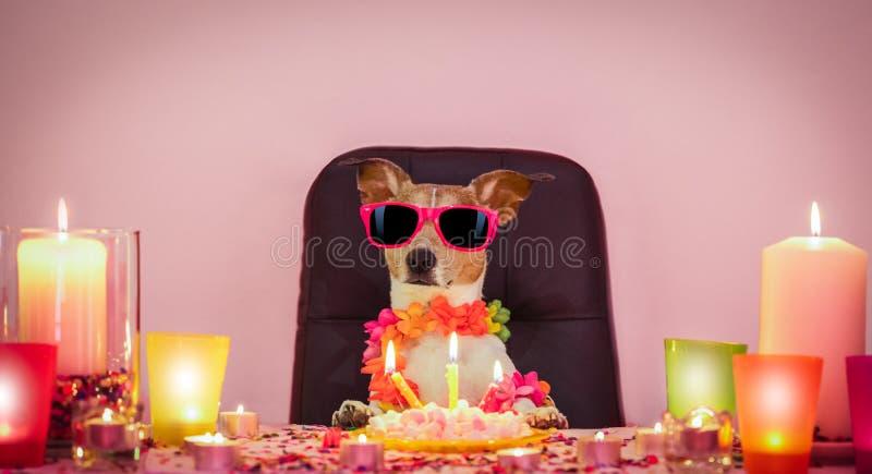 Crabot de joyeux anniversaire photographie stock libre de droits