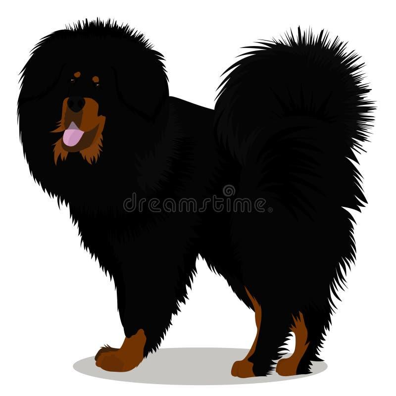 Crabot de Mastiff tibétain illustration libre de droits