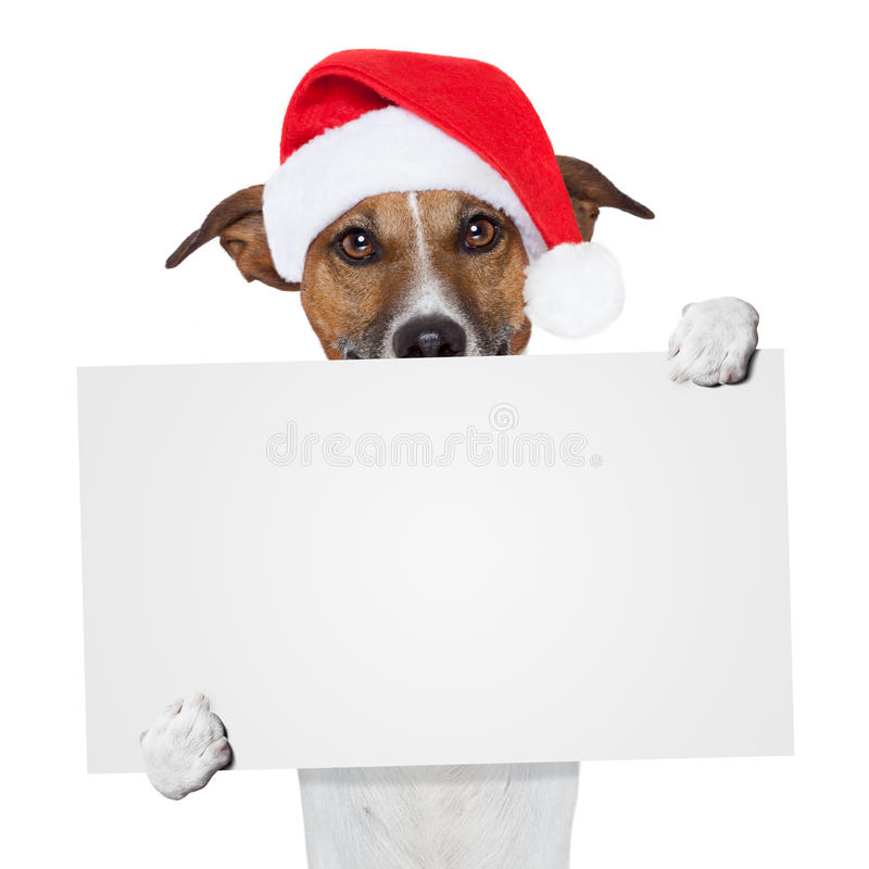 Crabot de texte d'attente de drapeau de Noël photographie stock