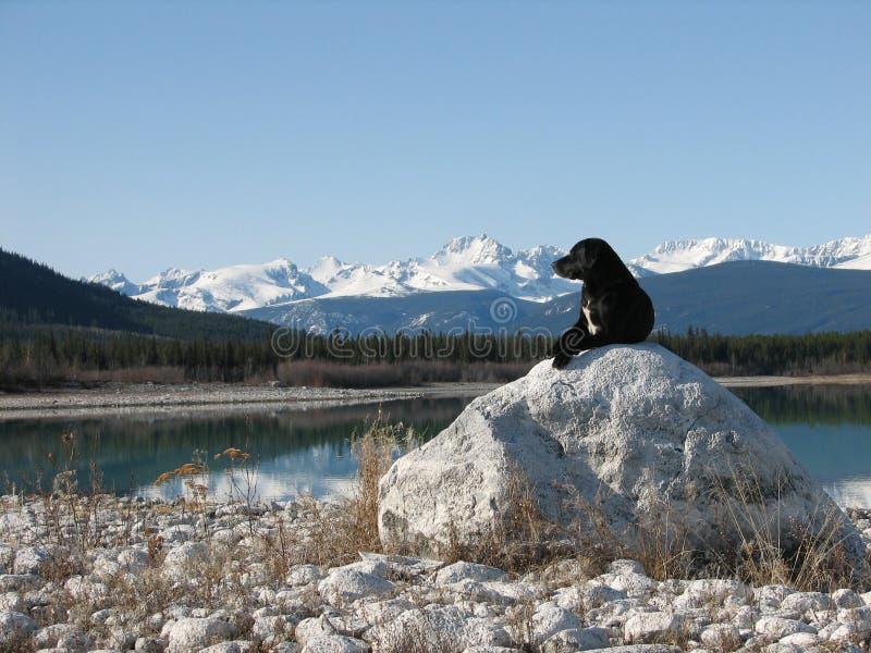 Download Crabot et montagnes photo stock. Image du regarder, roches - 729280