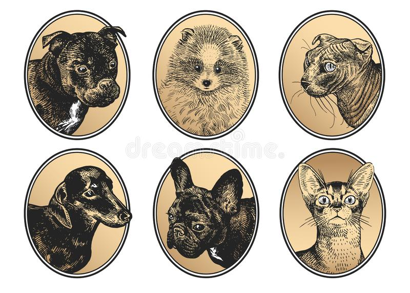Crabots et chats Portraits des animaux familiers dans l'ensemble de cadre illustration de vecteur
