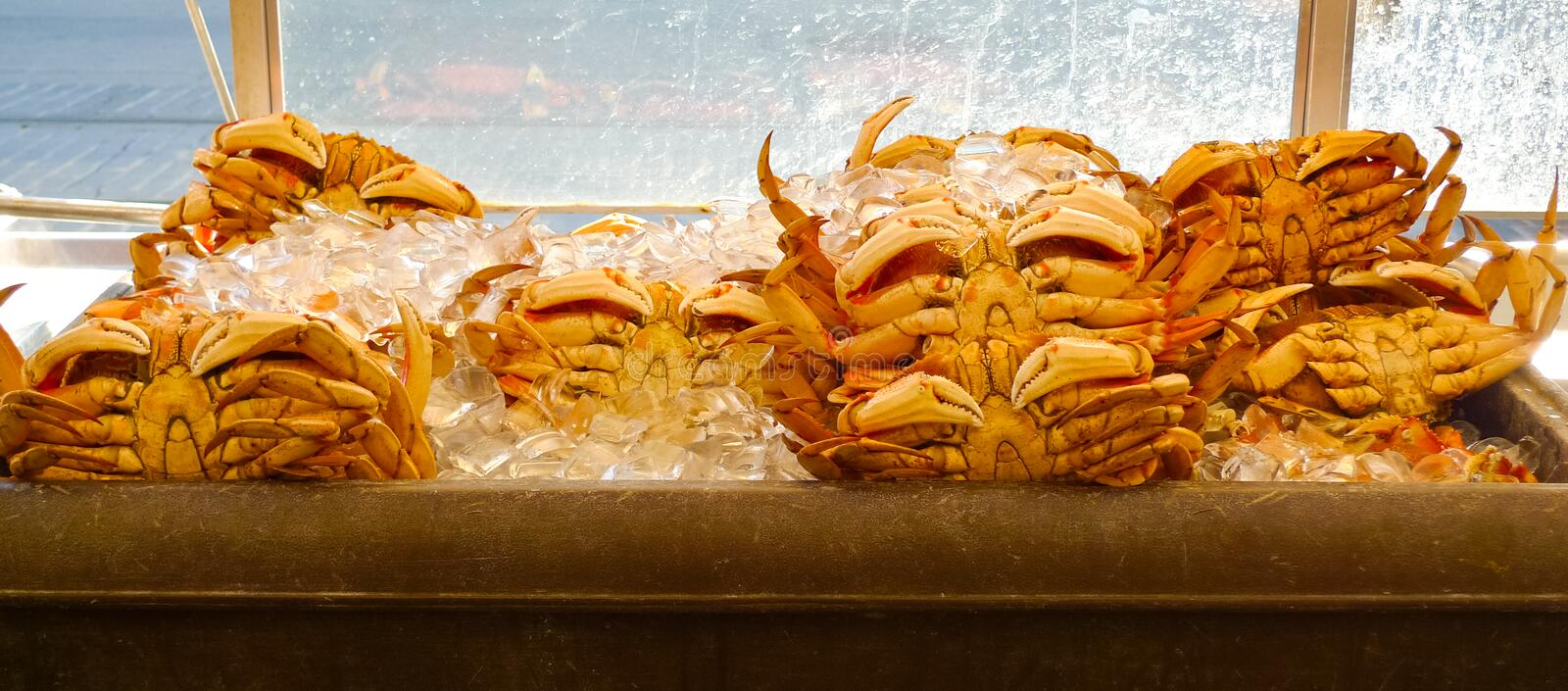 Download Crabs Stock Images - Image: 28504274
