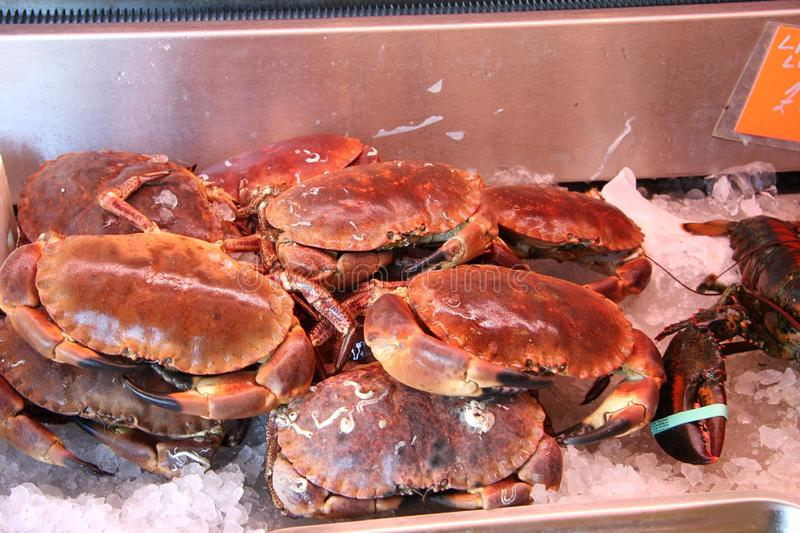 Crabs from fishmongers. Fishmongers crabs cooked on counter in ice stock photography