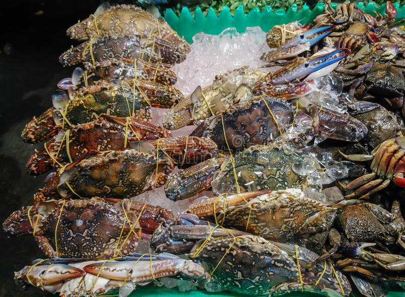 Crabs, fresh from the sea, soak in ice. stock photo