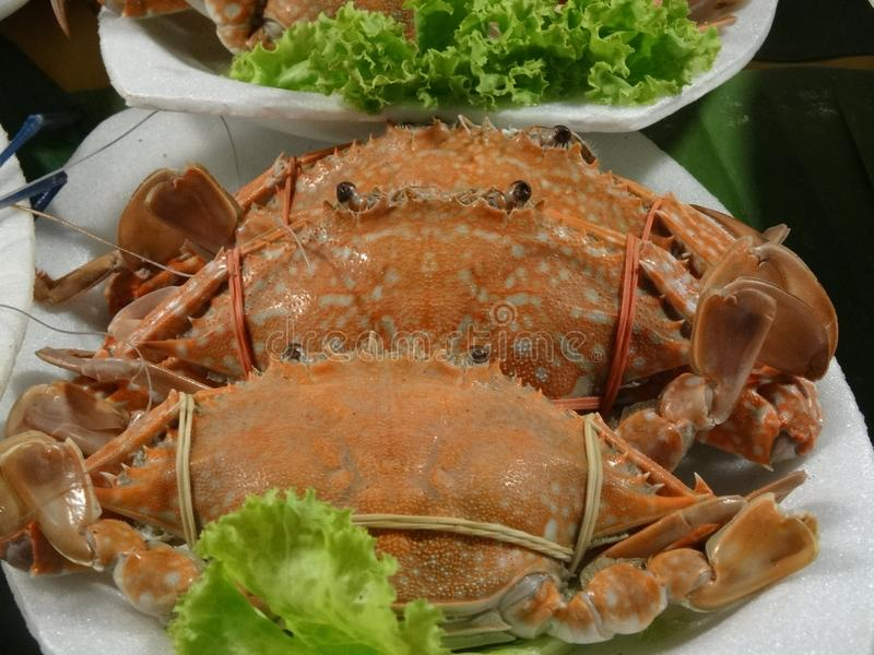 Crabs at the market royalty free stock image