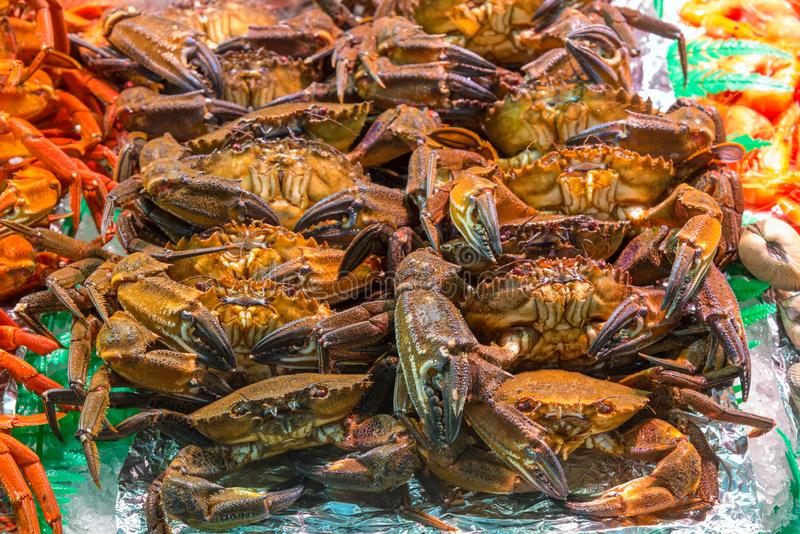 Crabs for sale at a market. In Madrid, Spain royalty free stock photo