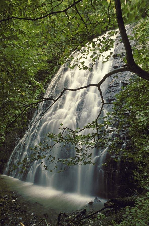 Download Crabtree Falls, NC stock image. Image of crabtree, leaf - 28650471