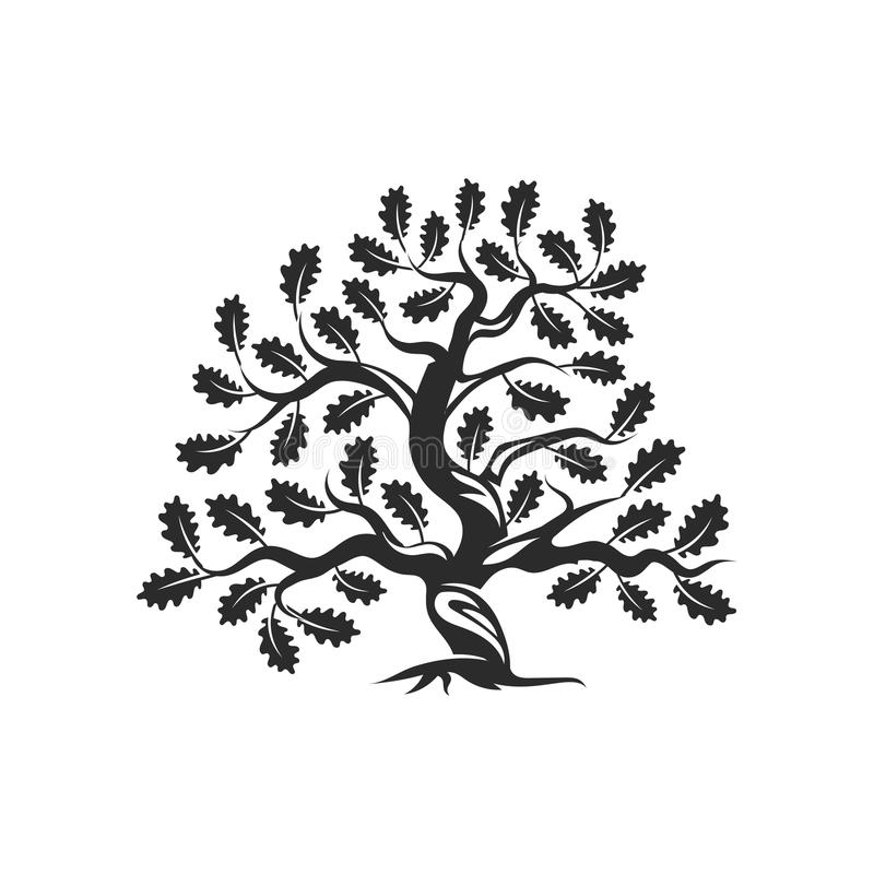 Crachá enorme e sagrado do logotipo da silhueta do carvalho isolado no fundo branco ilustração royalty free