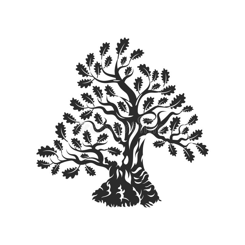 Crachá enorme e sagrado do logotipo da silhueta do carvalho isolado no fundo branco ilustração do vetor