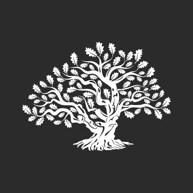 Crachá enorme e sagrado do logotipo da silhueta do carvalho isolado no fundo escuro ilustração stock