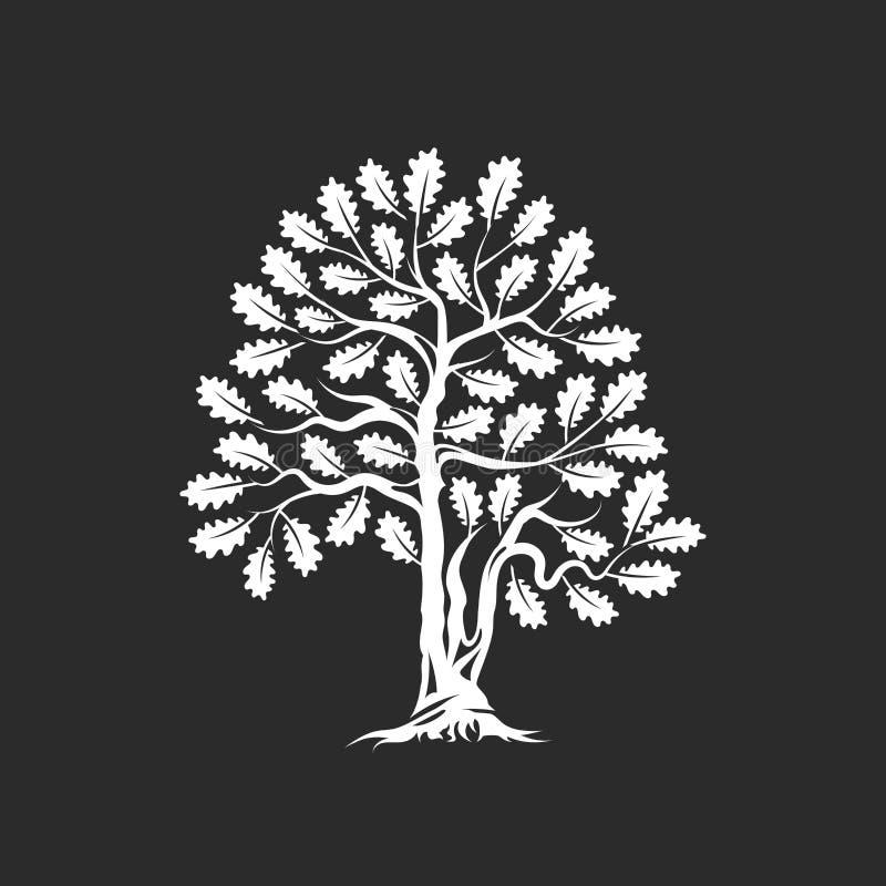 Crachá enorme e sagrado do logotipo da silhueta do carvalho isolado no fundo escuro ilustração do vetor