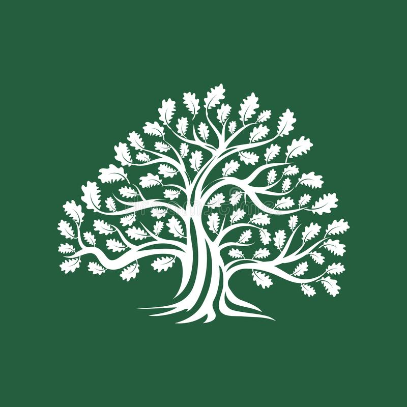 Crachá enorme e sagrado do logotipo da silhueta do carvalho isolado no fundo marrom ilustração do vetor