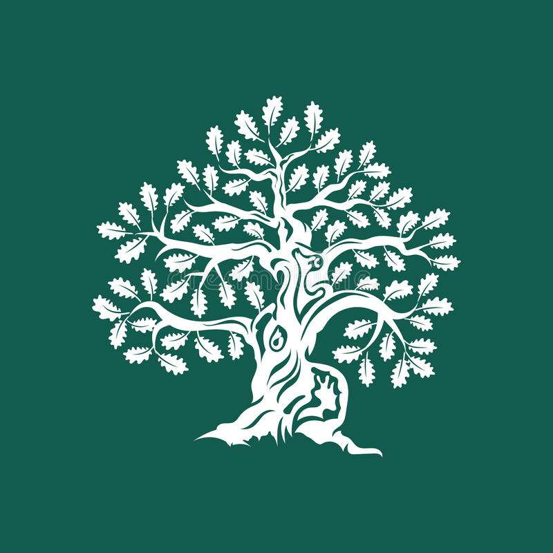 Crachá enorme e sagrado do logotipo da silhueta do carvalho isolado no fundo verde ilustração do vetor