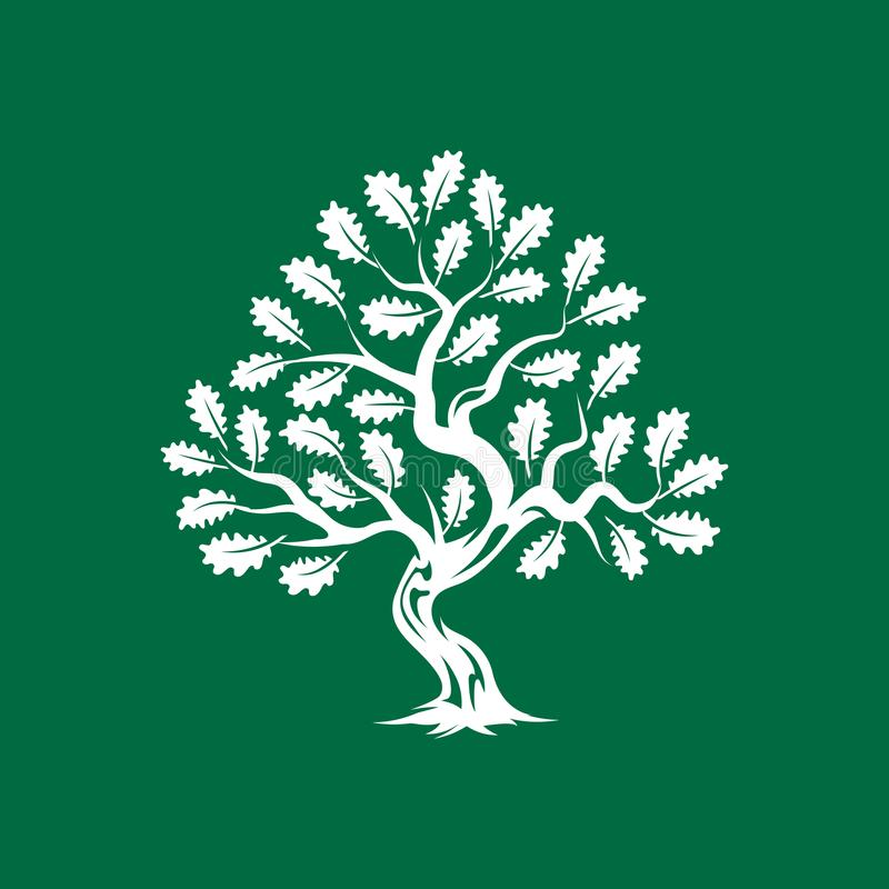 Crachá enorme e sagrado do logotipo da silhueta do carvalho isolado no fundo verde ilustração stock