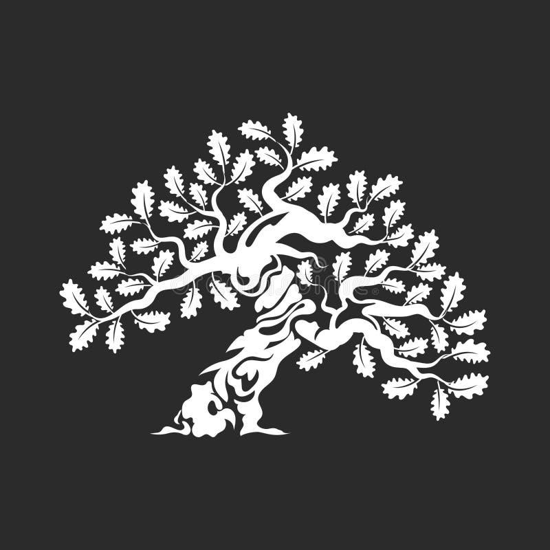 Crachá enorme e sagrado do logotipo da silhueta do carvalho no fundo escuro ilustração stock