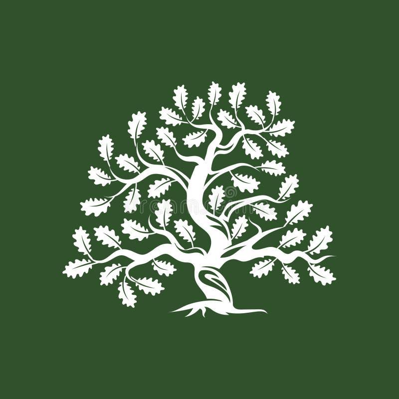 Crachá enorme e sagrado do logotipo da silhueta do carvalho no fundo verde ilustração royalty free