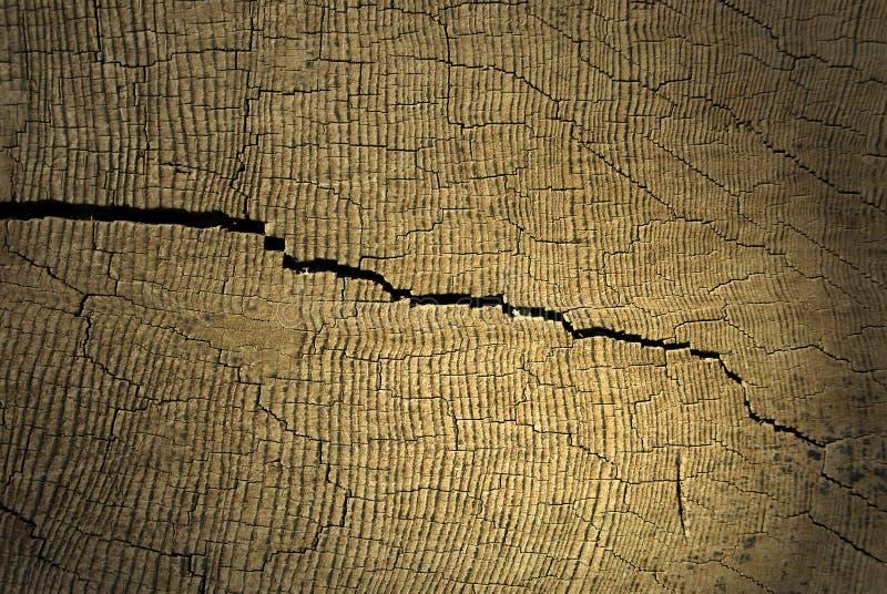 Download Crack stock image. Image of earth, resource, crack, chop - 14592949