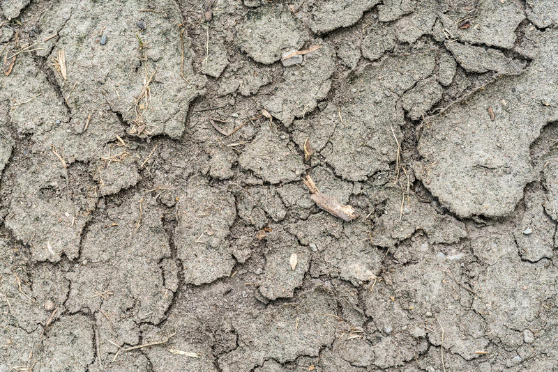 Crack dry soil. In summer royalty free stock photo