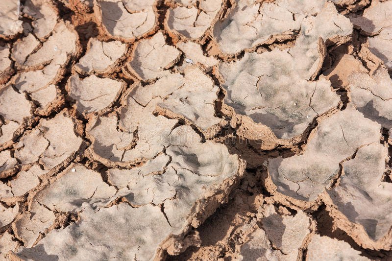 Crack Earth Dry Royalty Free Stock Image
