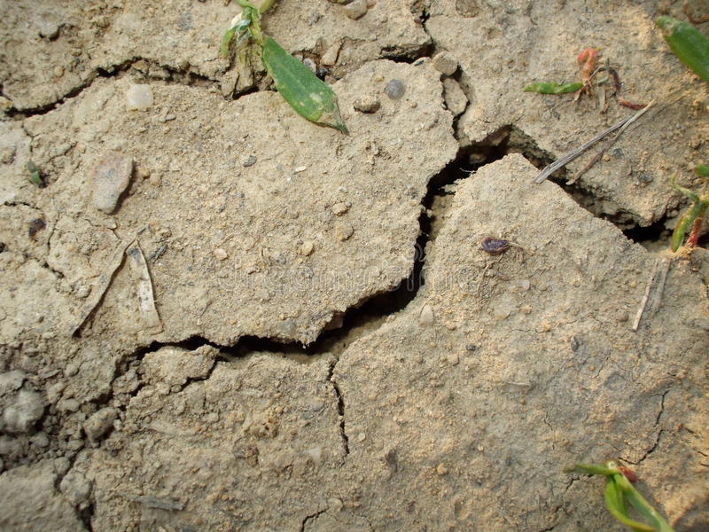 Crack in the ground royalty free stock photography